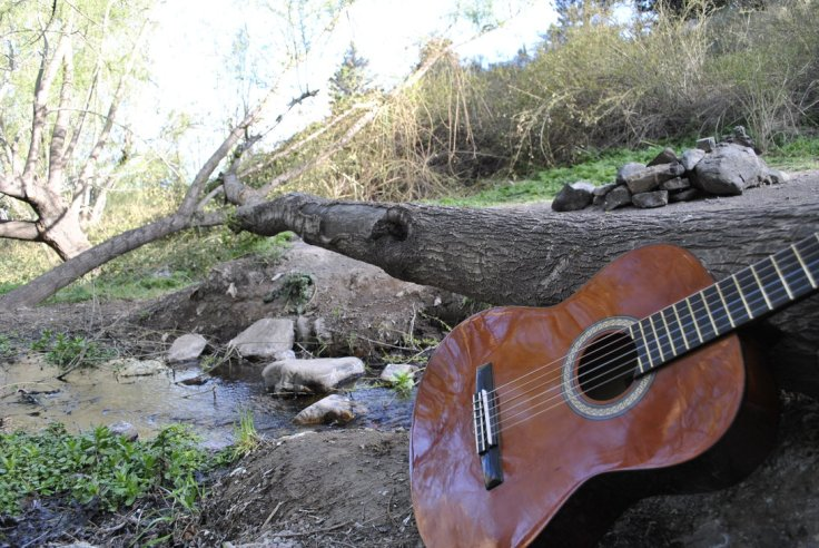 guitar_and_nature_by_latin_fox-d6r6cn1